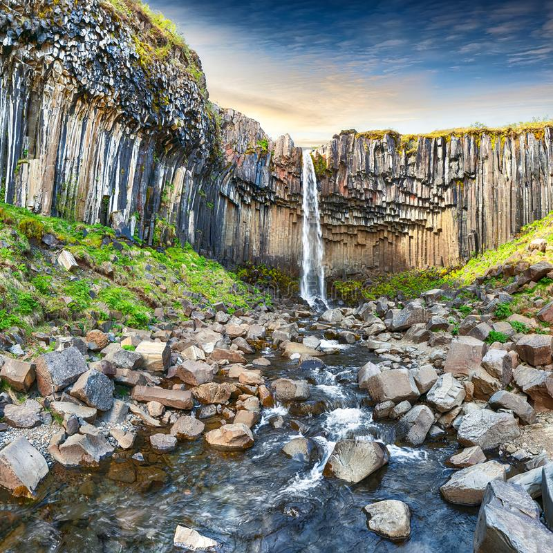 Free Amazing View Of Svartifoss Waterfall With Basalt Columns On South Iceland Royalty Free Stock Photo - 155609255
