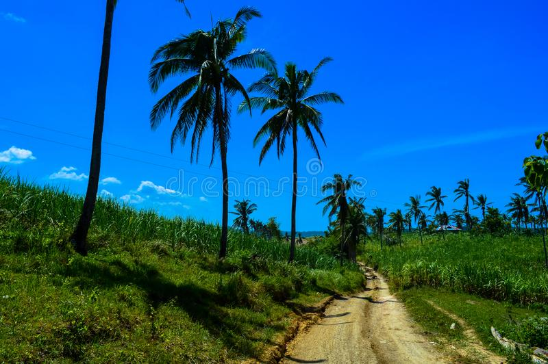 Amazing view over Cebu Island, Philippines. View over Cebu Island, Philippines royalty free stock images