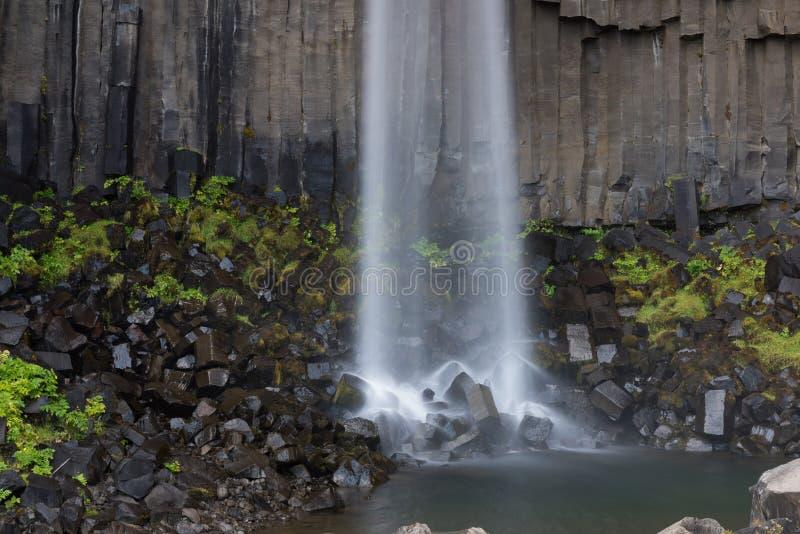 Amazing view of Svartifoss waterfall. Scenic image of beautiful nature landscape. Popular tourist attraction. Location Skaftafell. National Park, Vatnajokull royalty free stock image
