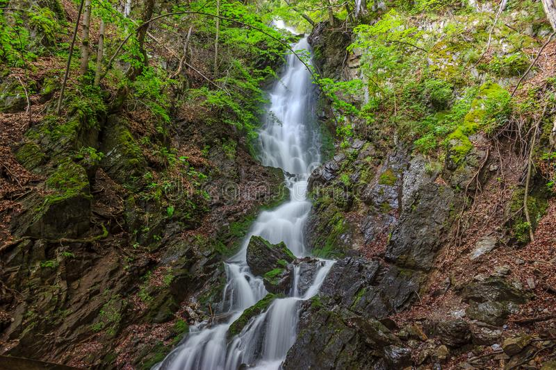 Amazing waterfall flowing from the cliffs royalty free stock photos