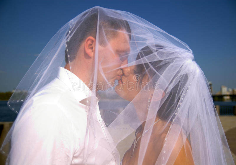 Amazing wedding couple under veil in love stock photo