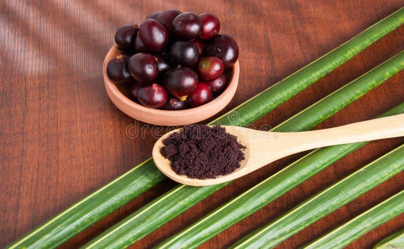 The amazon acai fruit. Euterpe oleracea. Acai berry powder. isolated on a wooden background stock image