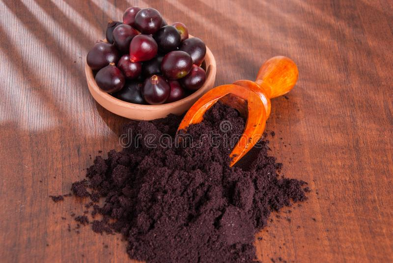The amazon acai fruit. Euterpe oleracea. Bowl of acai powder and fresh berries on dark wooden table royalty free stock images