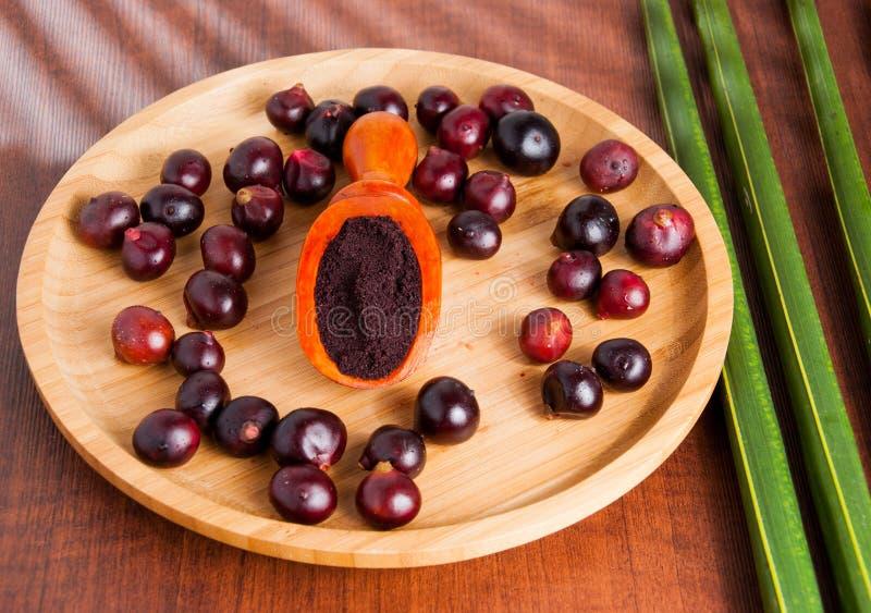 The amazon acai fruit. Euterpe oleracea. Bowl of acai powder and fresh berries on dark wooden table royalty free stock photo