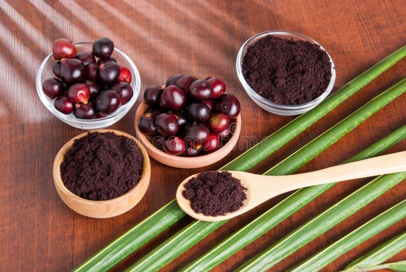 The amazon acai fruit. Euterpe oleracea. Bowl of acai powder and fresh berries on dark wooden table stock images