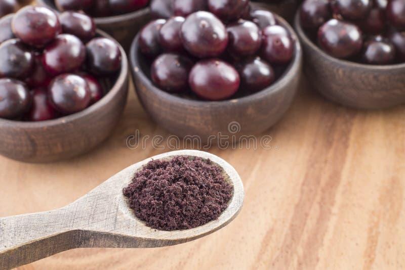 The amazon acai fruit - Euterpe oleracea. The acai is a fruit of characteristic very dark purple color royalty free stock photography