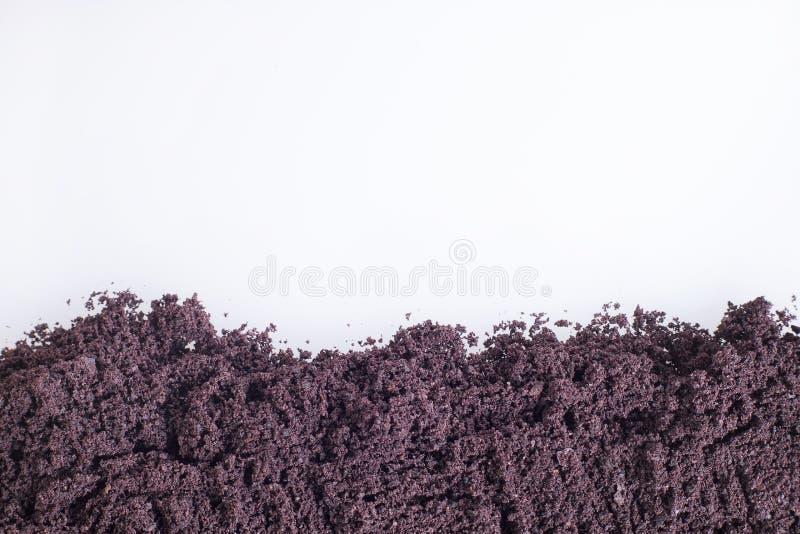 The amazon acai fruit Euterpe oleracea. The acai is a fruit of characteristic very dark purple color royalty free stock photos