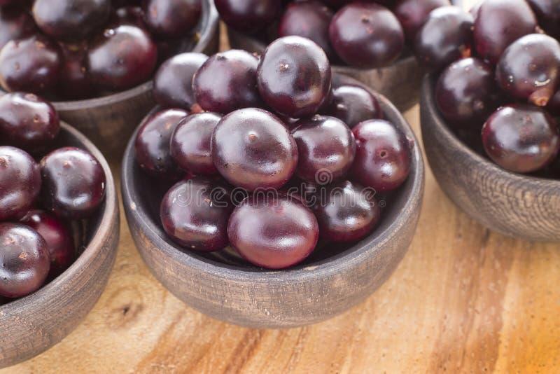 The amazon acai fruit Euterpe oleracea. The acai is a fruit of characteristic very dark purple color stock images