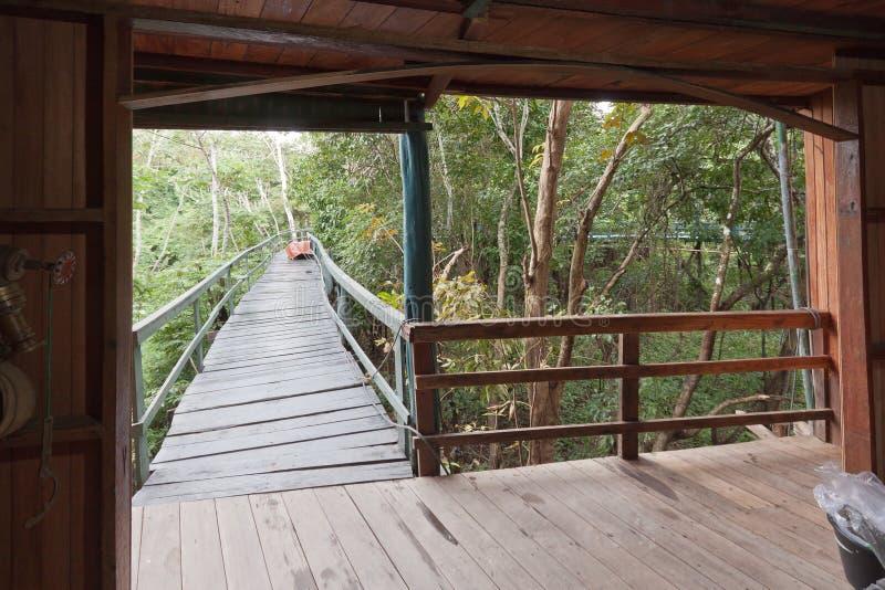 amazon ariau Brazil hotelowy Manaus góruje zdjęcia stock