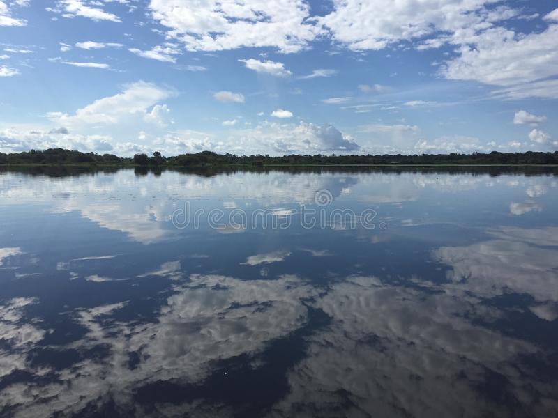 Amazon reflections royalty free stock images