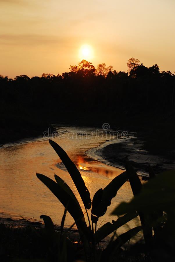 Amazon river sunset royalty free stock images