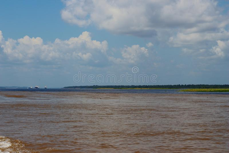Amazonas河,棕色水河与李仙江不混合它  它` s自然现象 巴西它` s热带计数 库存图片