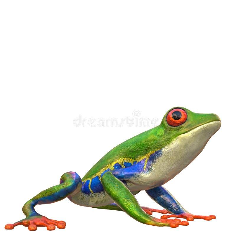 Amazonas-Frosch in einem weißen Hintergrund lizenzfreie abbildung