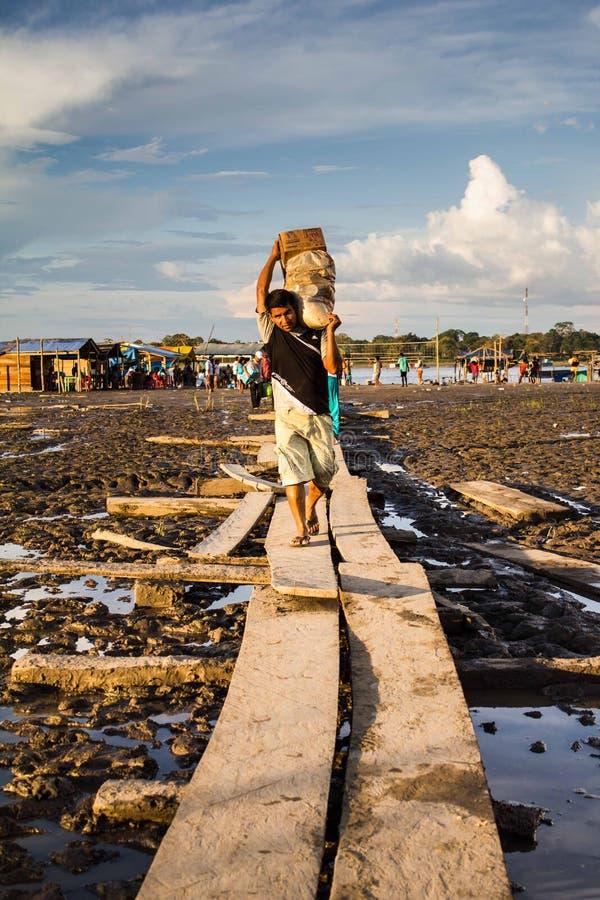 Amazonas Südamerika stockfoto