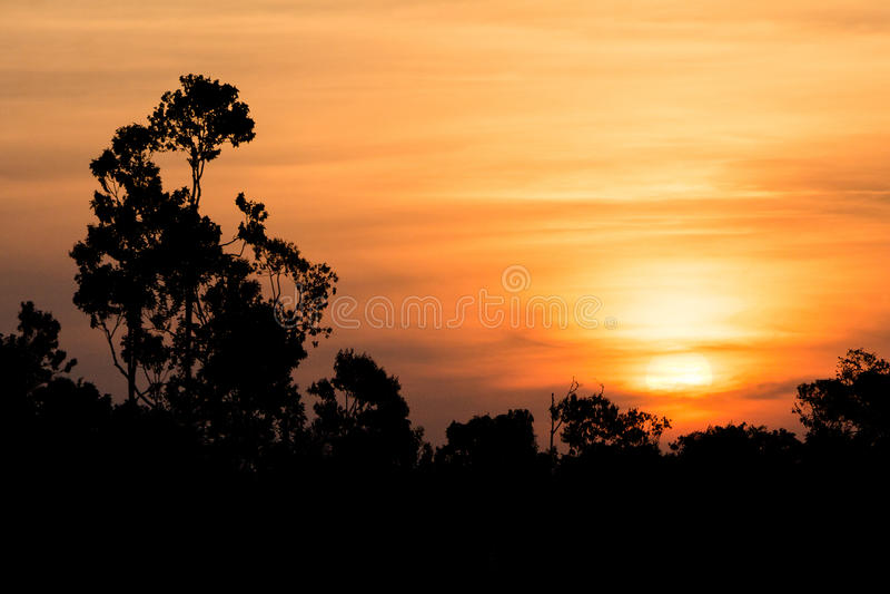 Amazonas-Sonnenuntergang lizenzfreies stockbild
