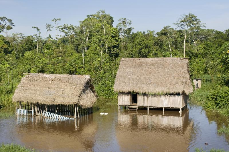 Amazonas village. Typical indian tribes settlement in Amazon stock photos