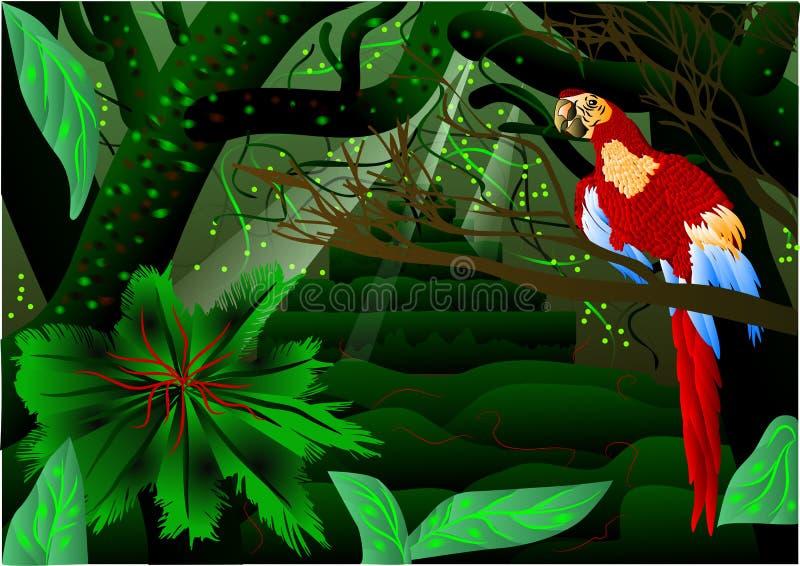 Amazonas-Wald lizenzfreie abbildung