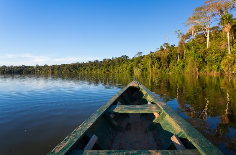 AMAZONAS-WALD VON EINEM BOOT lizenzfreies stockbild