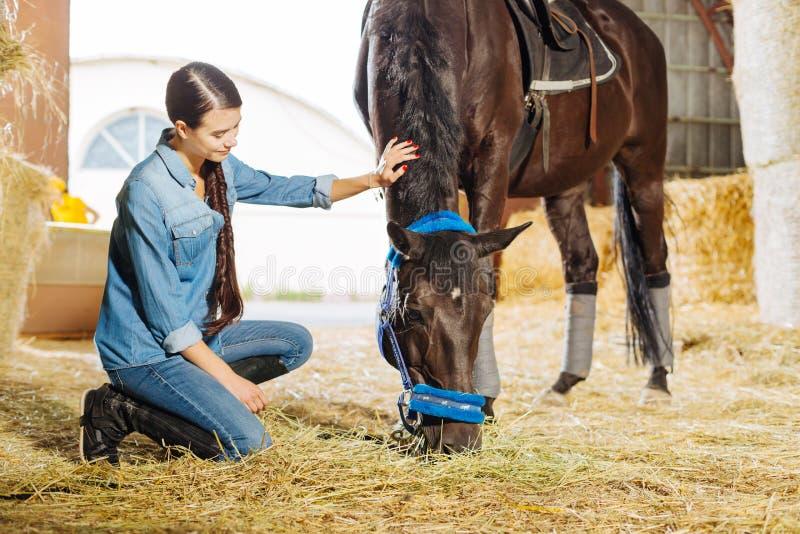 amazone aux cheveux foncés avec l'écurie de visite et le cheval de longue tresse photo stock