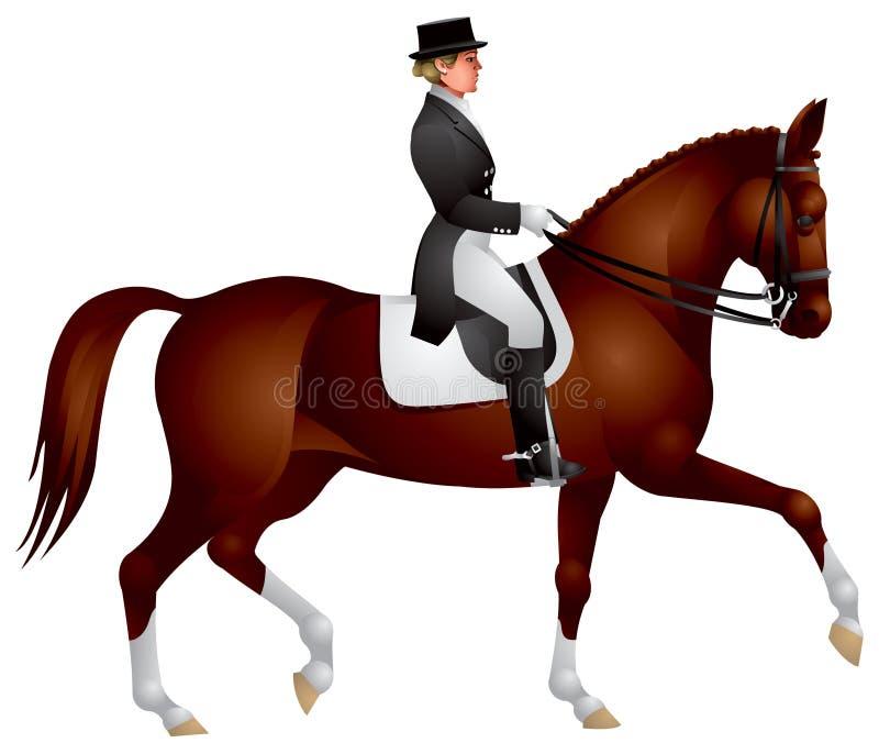 Amazone op een paard van de Dressuur vector illustratie