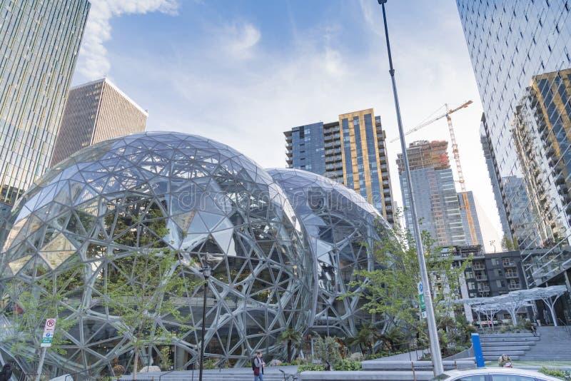 Amazonka świat Lokuje sfera kampus zdjęcie stock