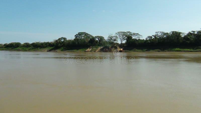 Amazonriver royaltyfri fotografi
