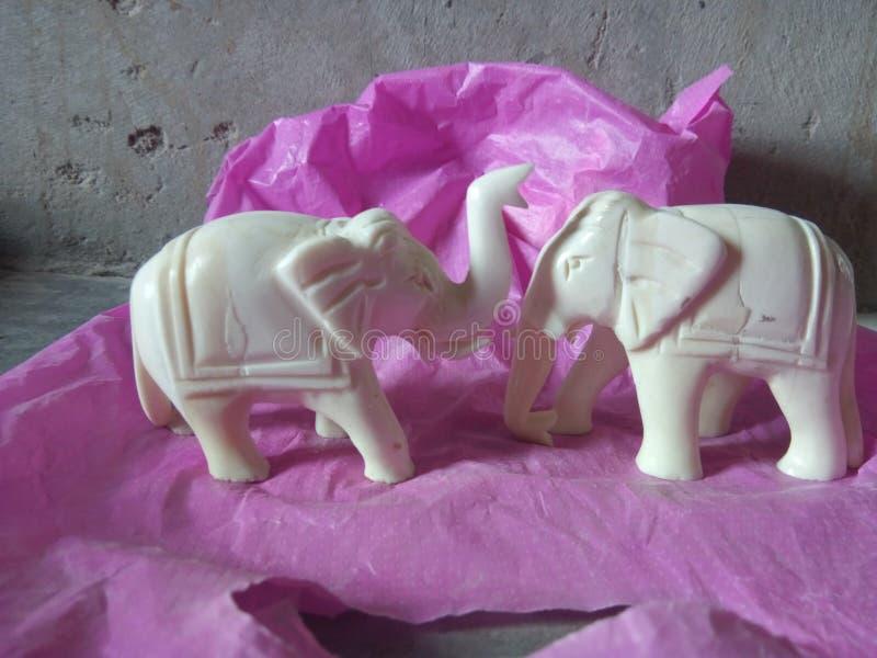 Ambawadi Rajasthani комплекта шахмат короля стоковое изображение