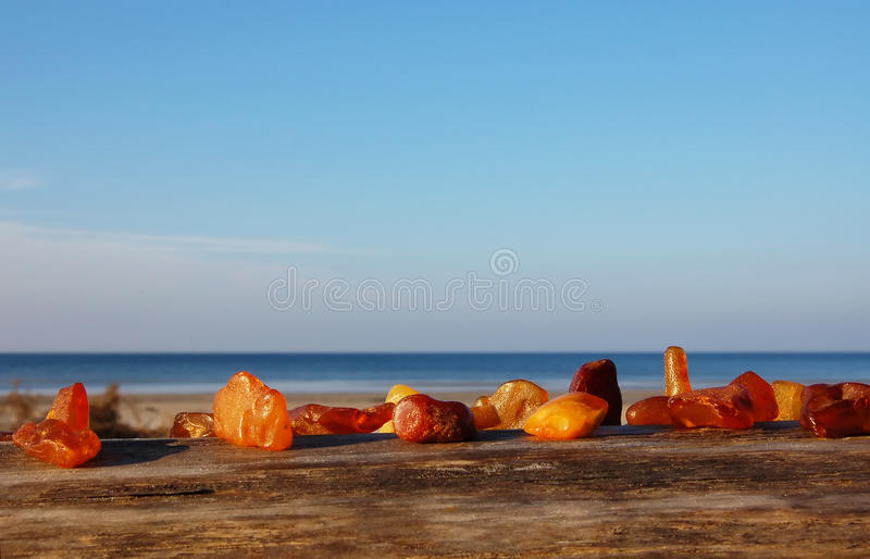 Amber in the nature on sea coast stock photos