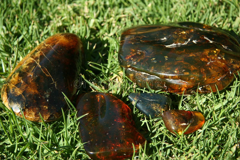 Download Amber Stock Images - Image: 522004