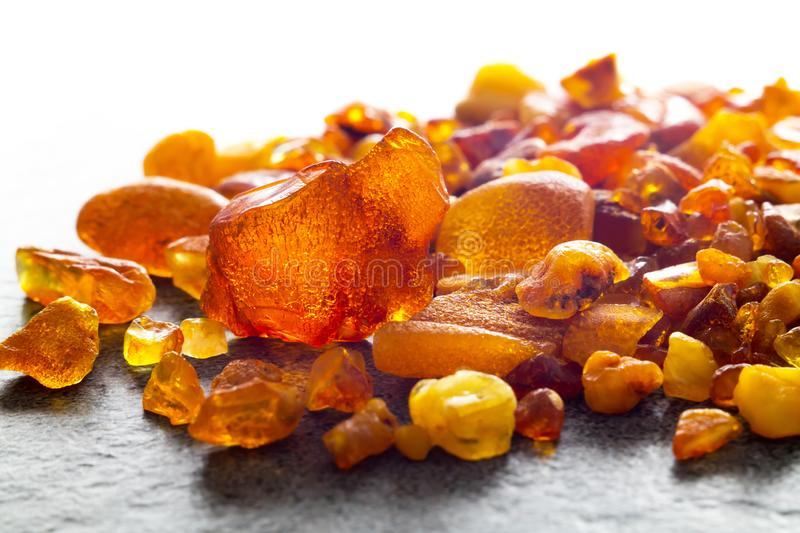 Amber from the Baltic Sea stock image