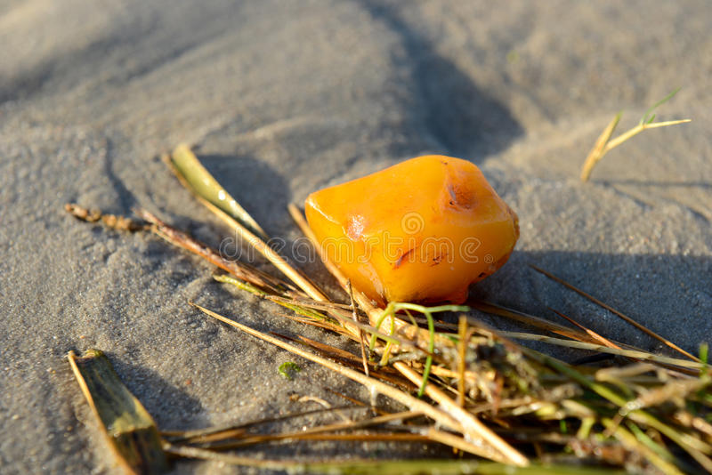 Amber on the beach. Yellow amber on the beach stock photo