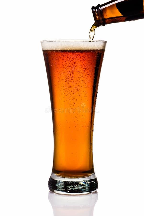 Amber Beer fotografie stock