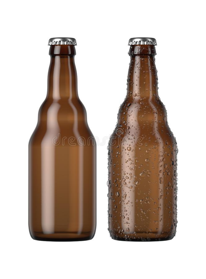 Amber Beer Bottle vide illustration stock