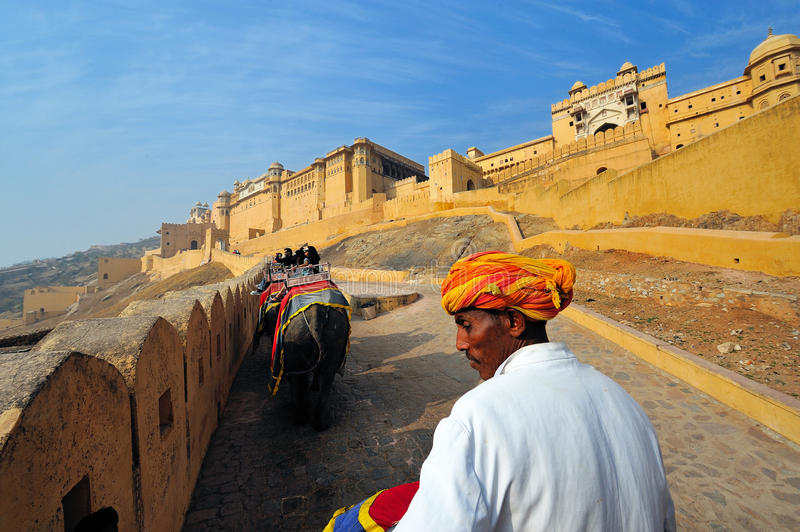 Amber fort elephant ride royalty free stock photos