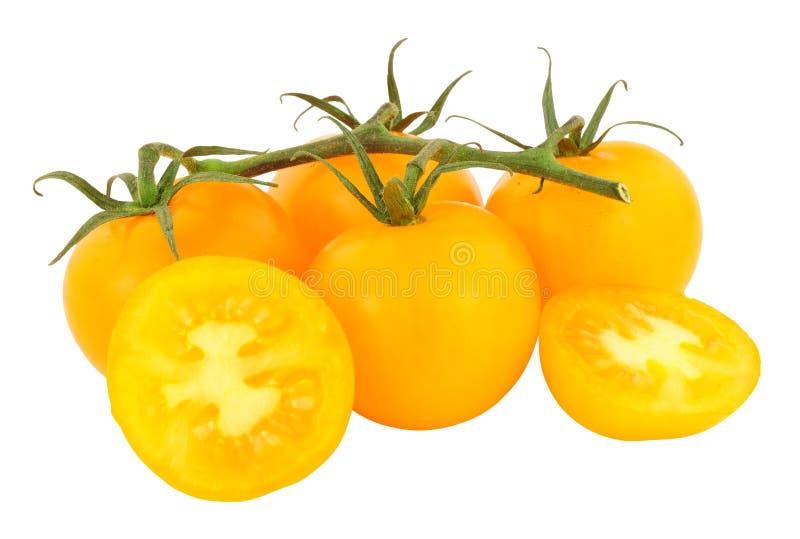 Amber Tomatoes madurada vid fresca fotografía de archivo libre de regalías