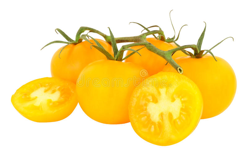Amber Tomatoes madurada vid fresca foto de archivo