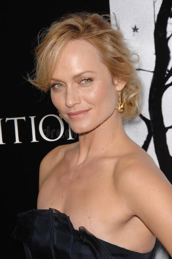 Amber Valletta royalty free stock image