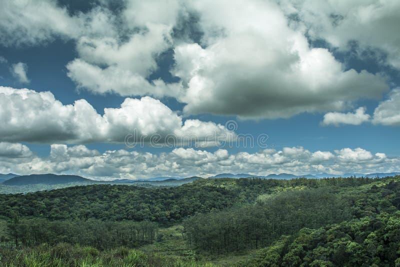 Ambewela, Nuwara Eliya Sri Lanka immagine stock libera da diritti