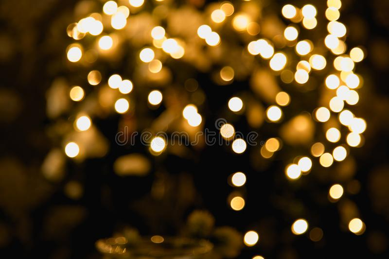 Ambient scene with Christmas tree on dark background.  stock photography