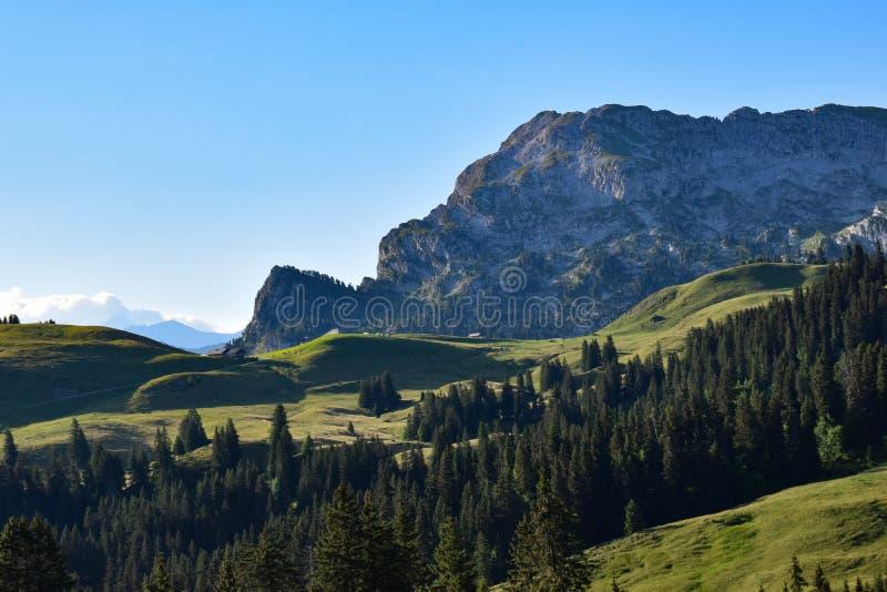 Ambiente alpino en las montañas suizas imagenes de archivo