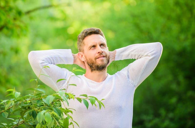 Ambiente calmo da natureza Rem?dios naturais da beleza Mantenha-o maneira saud?vel A natureza relaxa o spa resort Sinta o poder d fotografia de stock