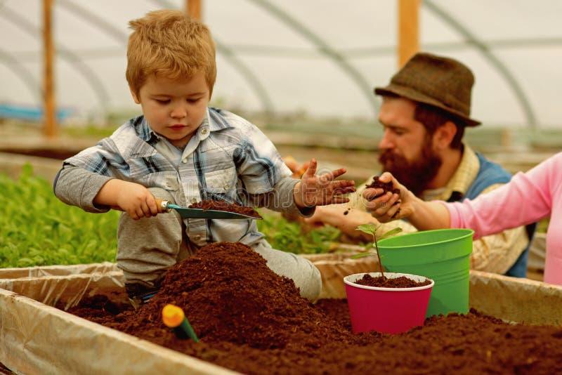 Ambiente de mundo ecologia do ambiente de mundo ambiente de mundo para a vida futura feliz luta da fam?lia para o mundo fotos de stock