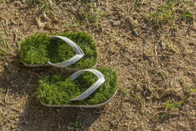 Ambiente del calentamiento del planeta, chancletas verdes del último aislado en hierba secada foto de archivo