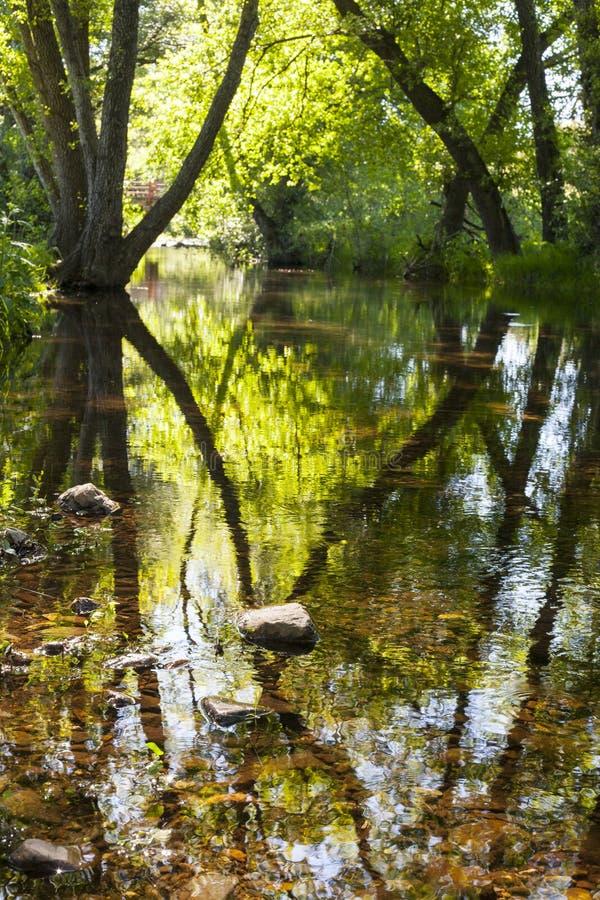 Ambiente del fiume di Gevora, Spagna fotografie stock