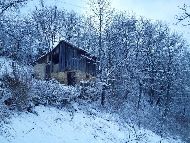 ambiente del invierno foto de archivo libre de regalías
