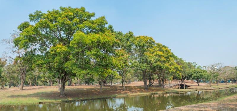 Ambiente del parco naturale del giardiniere di paesaggio, uso pubblico fotografia stock