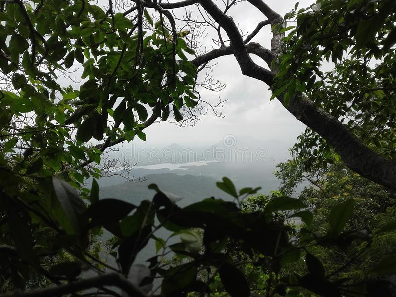 Ambiente Sri Lanka 36525596 imagen de archivo