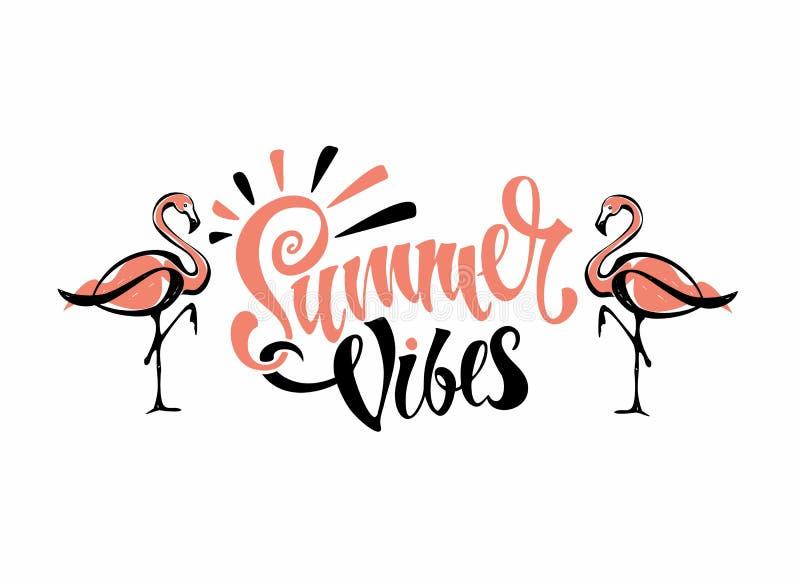 Ambientes del verano deletreado Los flamencos son rosados Invitación a irse tarjeta calligraphy Descriptio inspirado elegante ilustración del vector