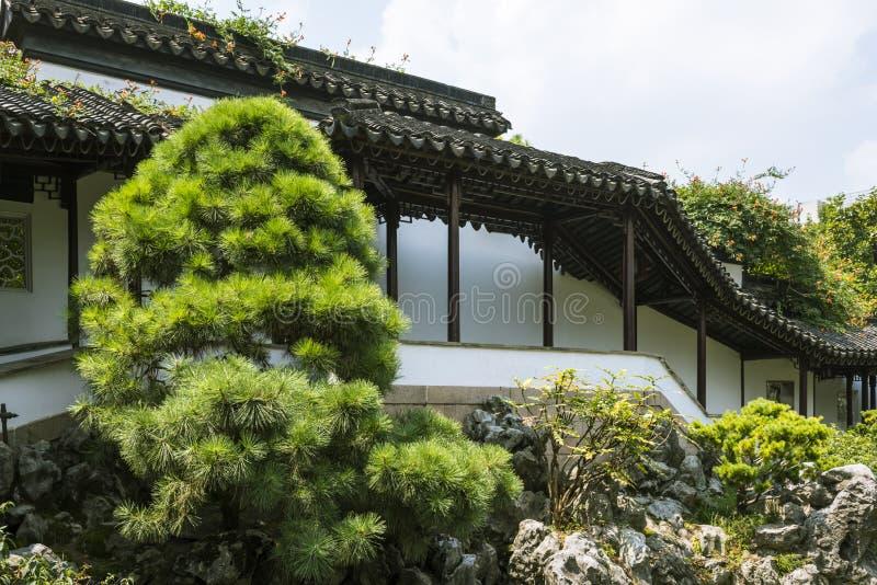 Ambita, Rockery i rośliny krajobraz zdjęcie stock