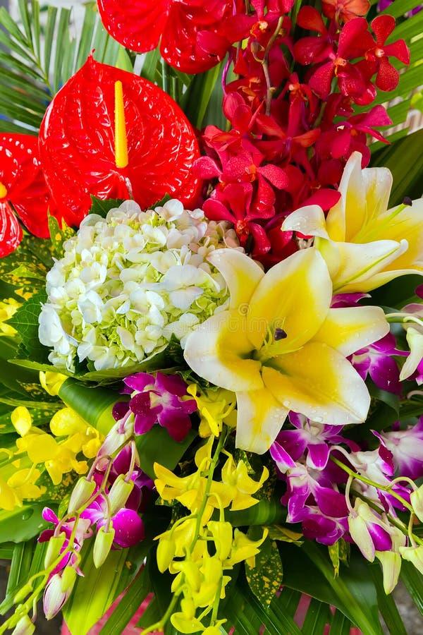 ambiti di provenienza della calla del mazzo dei fiori fotografia stock libera da diritti